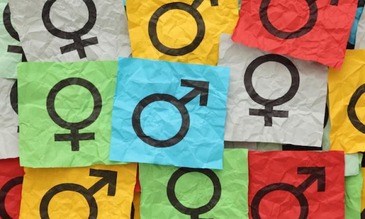 Gender equality image