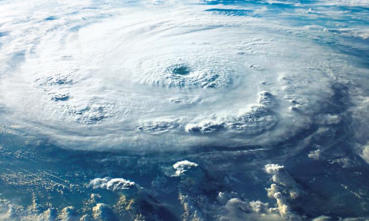 hurricane harvey, irma affect remodelers