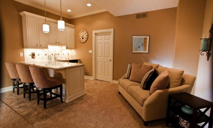 The lower level can be the most versatile area of a house when it comes to remodeling.