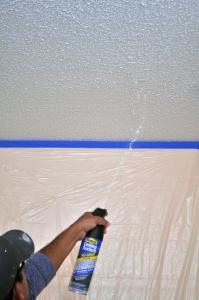Homax Pro Grade Popcorn Ceiling Texture